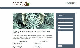 Cannabis Legal Pros